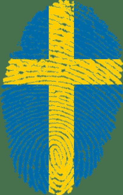 Den svenska modellen 6