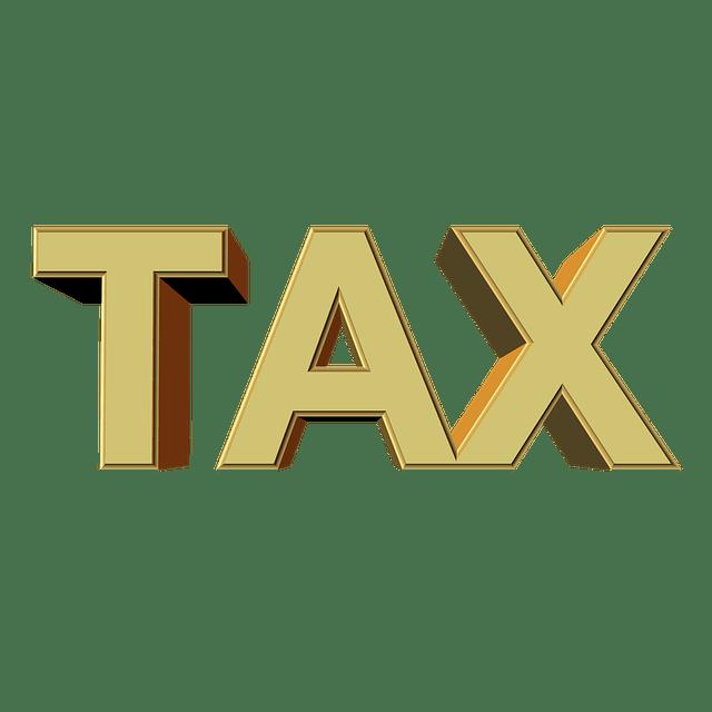 Skattefusk och Välfärdssocialism 13