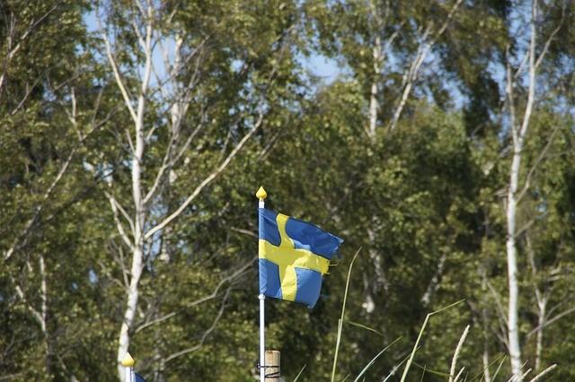 Upprop Till Svenska Män! 10