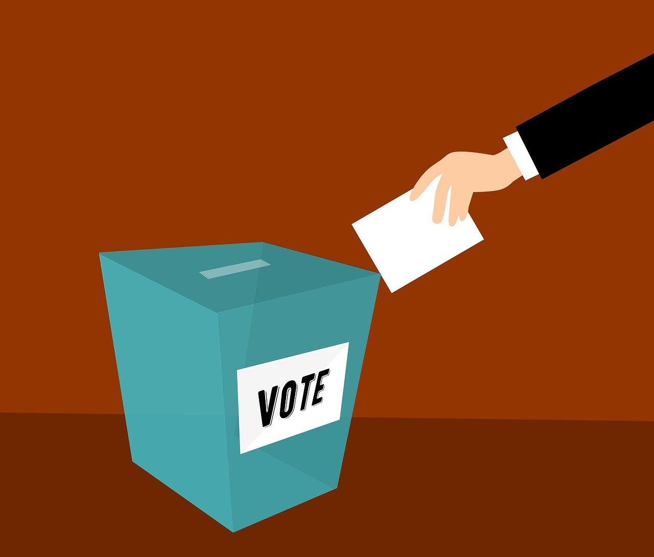 Fakultativ Rösträtt 6